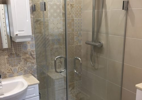 Folding frameless glass shower door